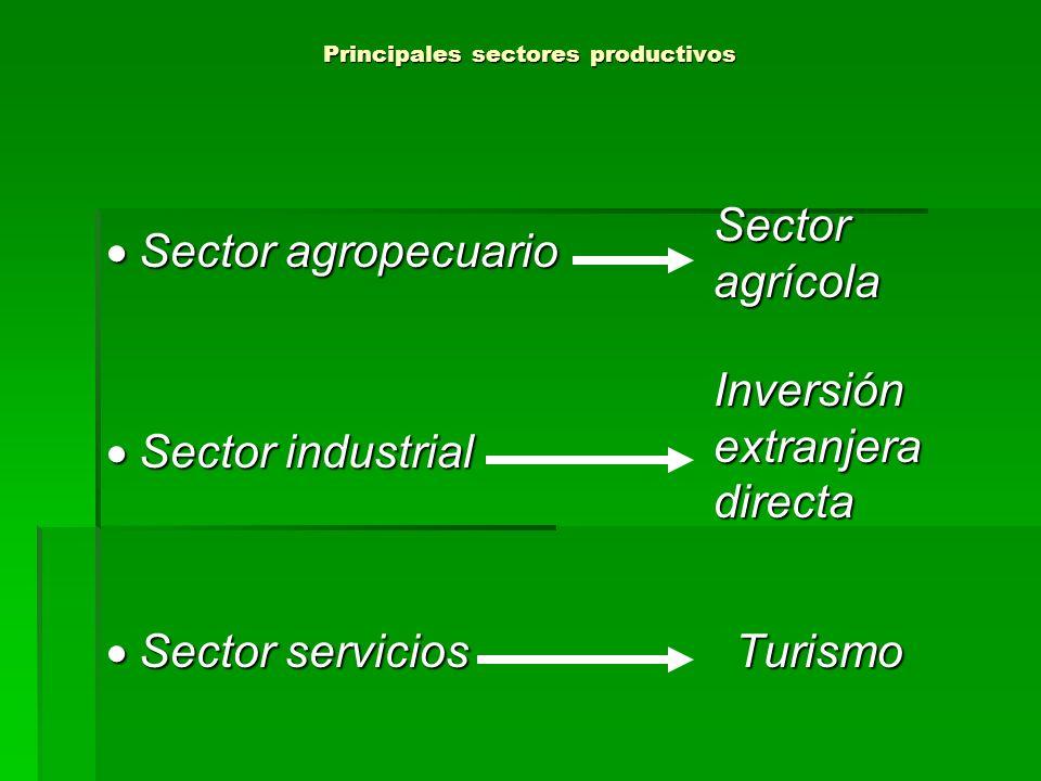 Principales sectores productivos