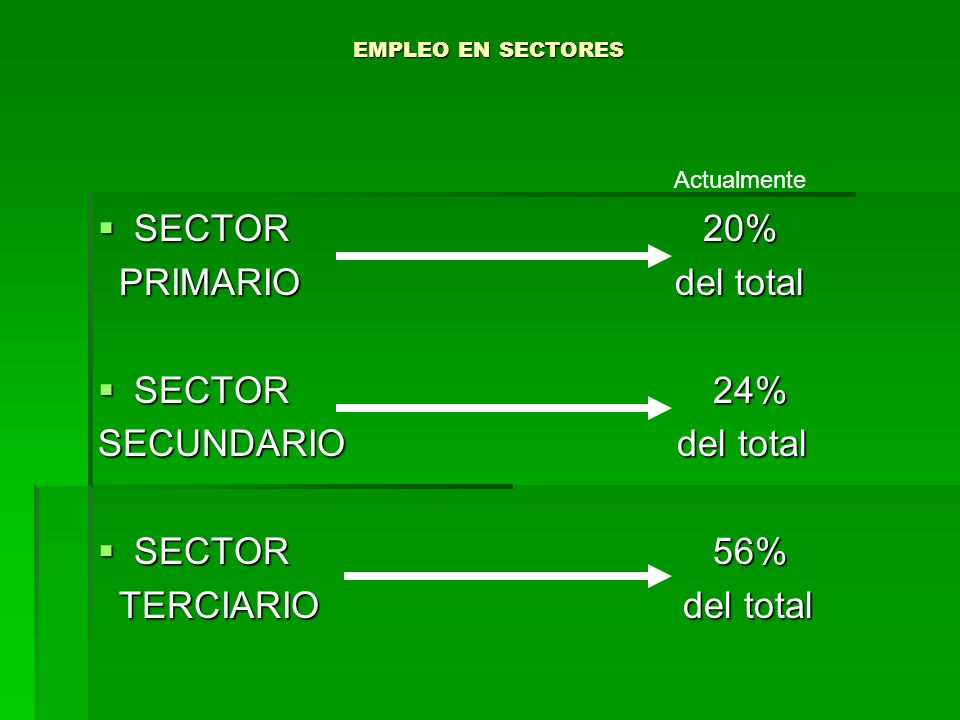 SECTOR 20% PRIMARIO del total SECTOR 24% SECUNDARIO del total