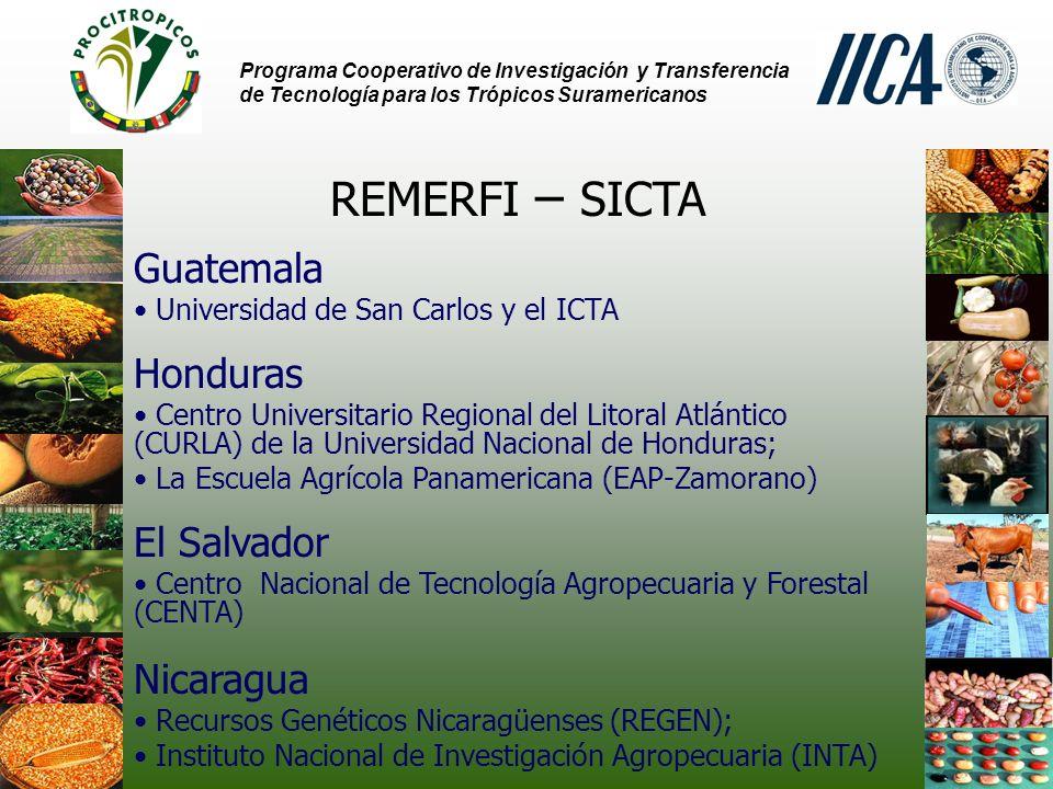 REMERFI – SICTA Guatemala Honduras El Salvador Nicaragua