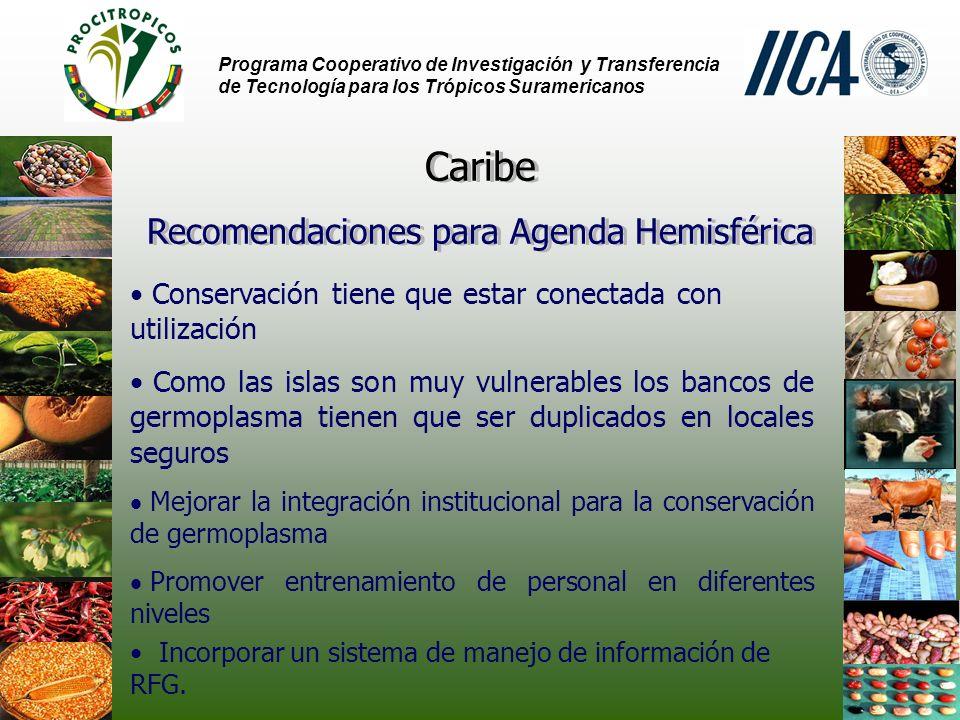 Recomendaciones para Agenda Hemisférica