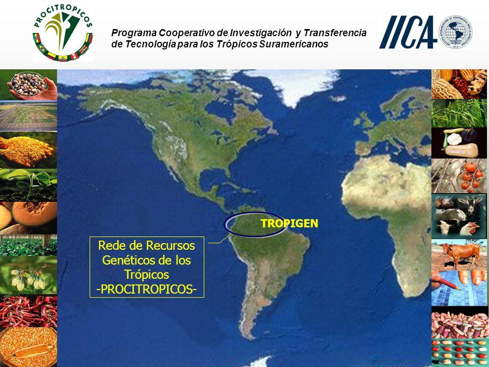 Rede de Recursos Genéticos de los Trópicos -PROCITROPICOS-