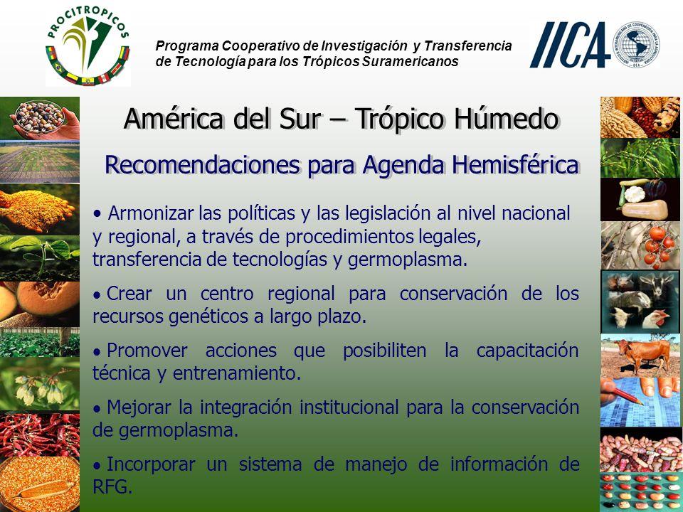 América del Sur – Trópico Húmedo