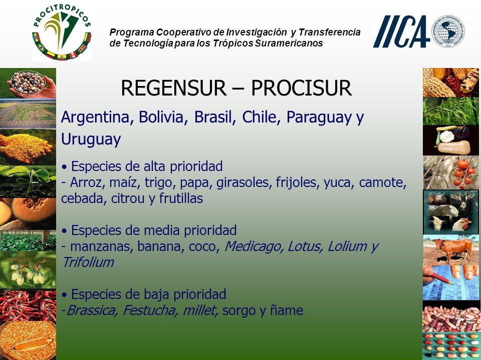 Programa Cooperativo de Investigación y Transferencia