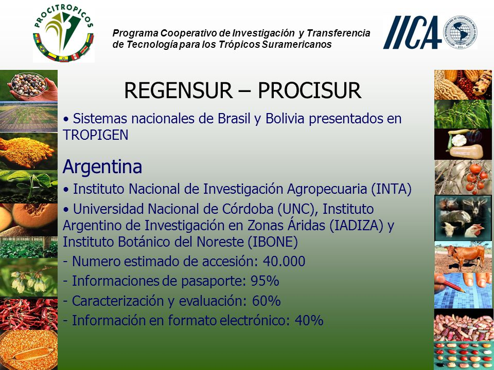 REGENSUR – PROCISUR Argentina