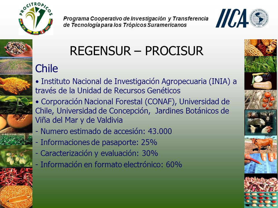 REGENSUR – PROCISUR Chile