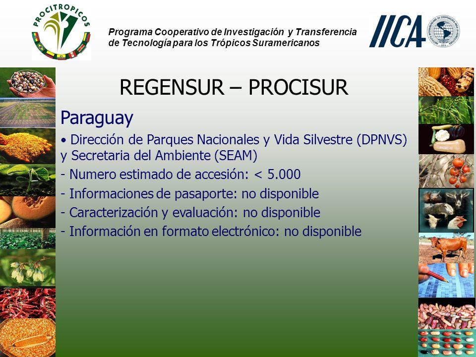 REGENSUR – PROCISUR Paraguay