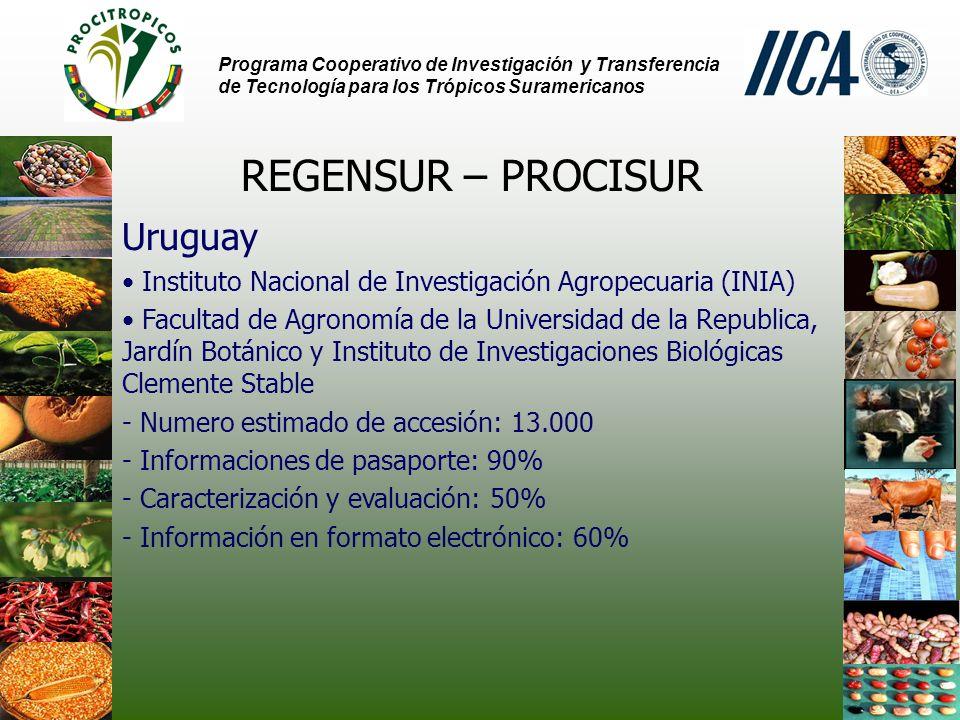 REGENSUR – PROCISUR Uruguay