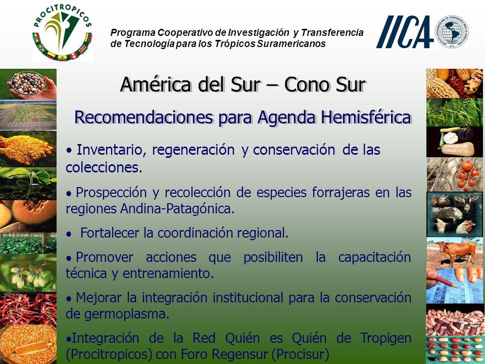 América del Sur – Cono Sur