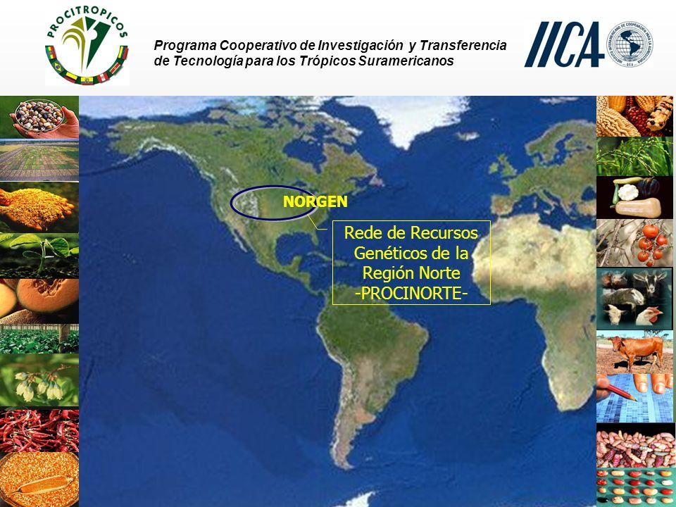 Rede de Recursos Genéticos de la Región Norte -PROCINORTE-