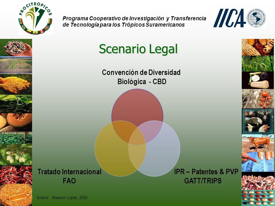 Convención de Diversidad Tratado Internacional