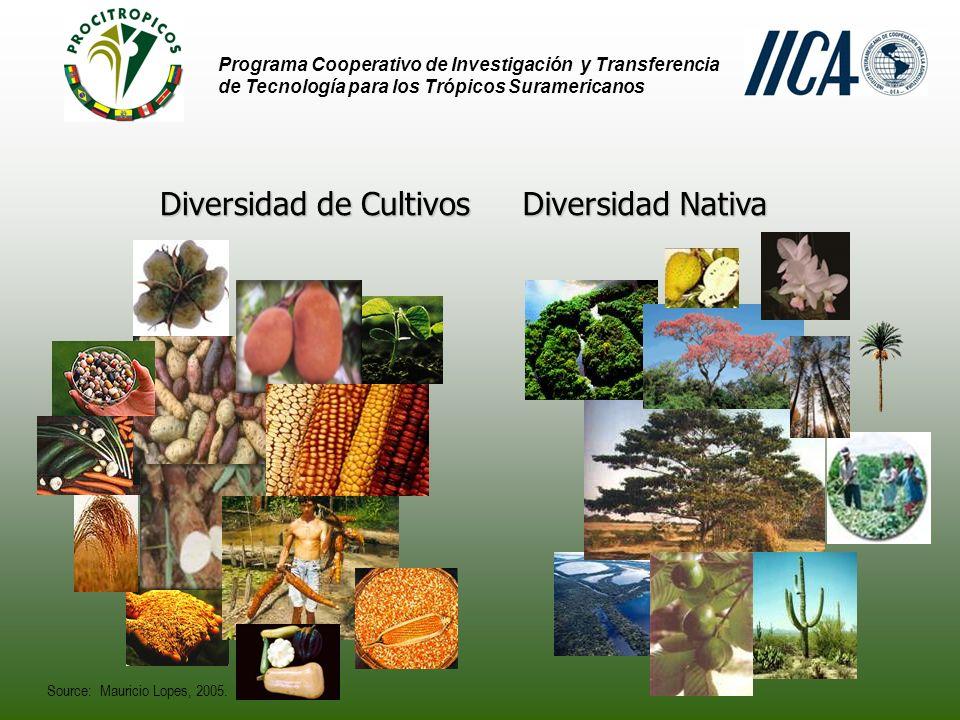 Diversidad de Cultivos Diversidad Nativa
