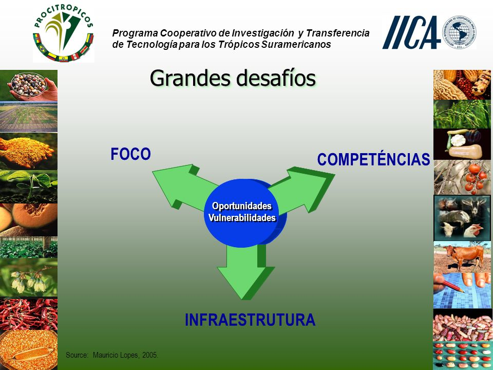 Source: Mauricio Lopes, 2005.