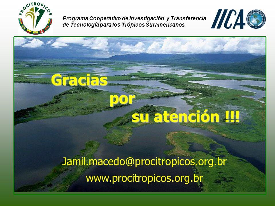 Gracias por su atención !!! Jamil.macedo@procitropicos.org.br