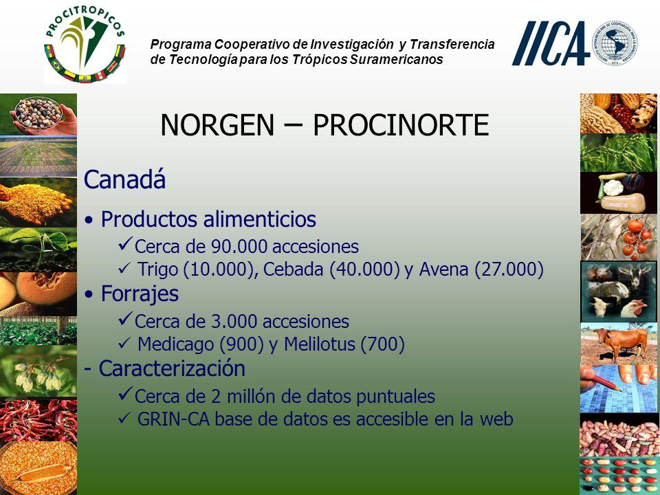 NORGEN – PROCINORTE Canadá Productos alimenticios