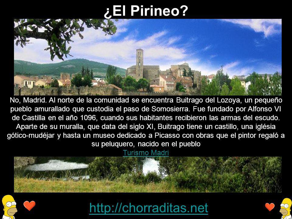 ¿El Pirineo