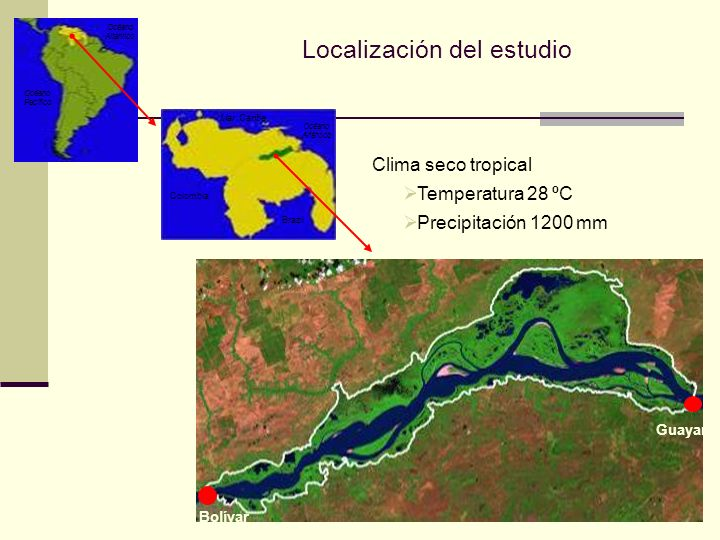 Localización del estudio