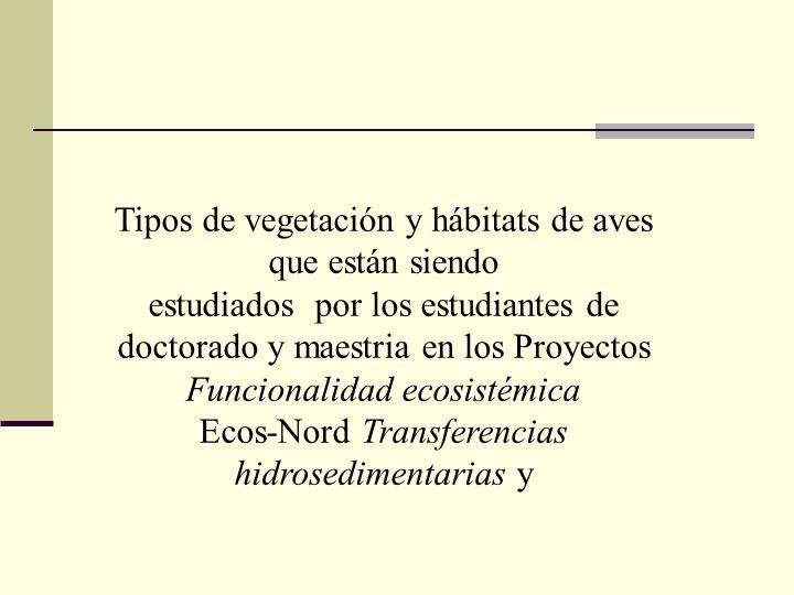 Tipos de vegetación y hábitats de aves que están siendo