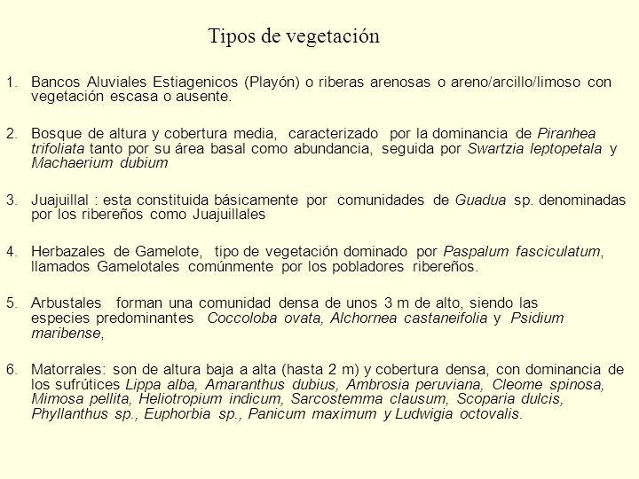 Tipos de vegetación Bancos Aluviales Estiagenicos (Playón) o riberas arenosas o areno/arcillo/limoso con vegetación escasa o ausente.