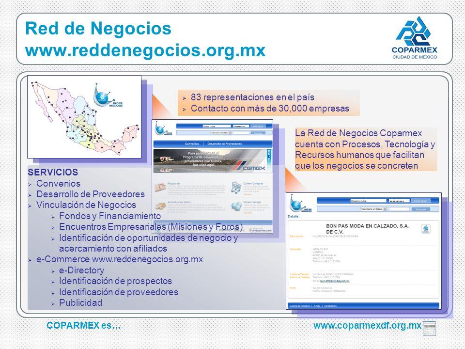 Red de Negocios www.reddenegocios.org.mx