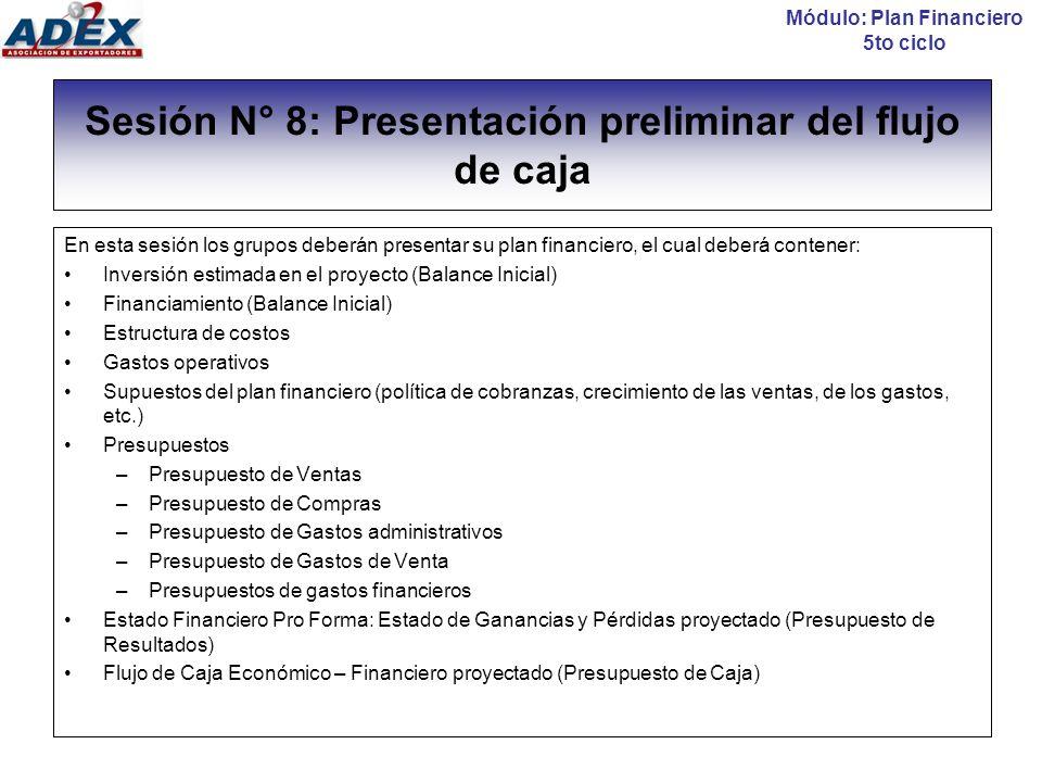 Sesión N° 8: Presentación preliminar del flujo de caja