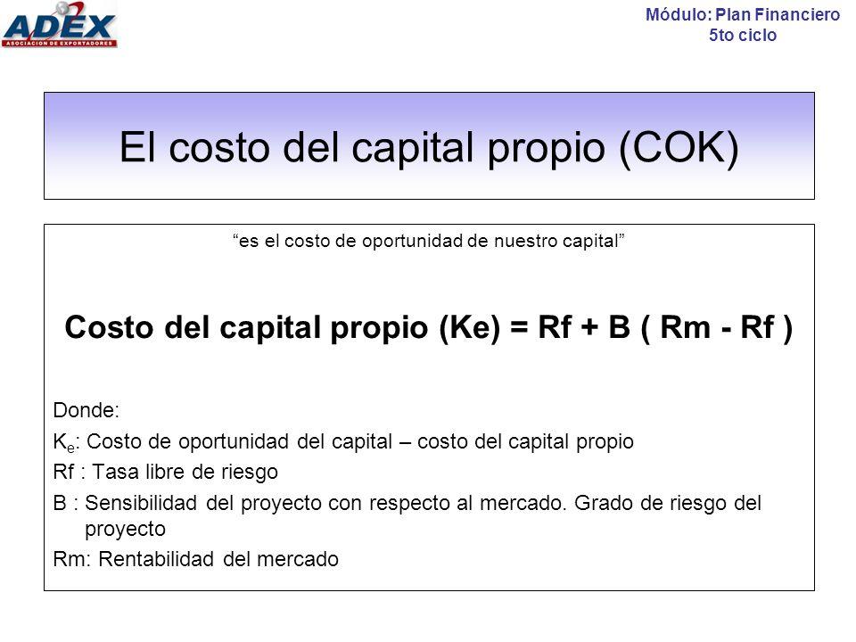 El costo del capital propio (COK)