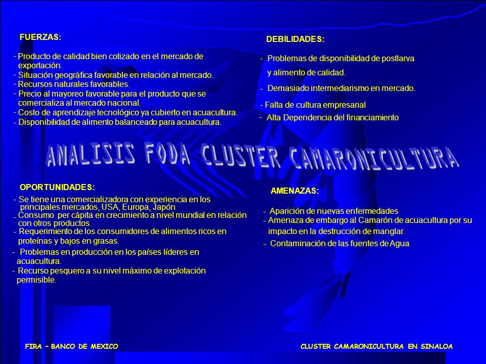 ANALISIS FODA CLUSTER CAMARONICULTURA