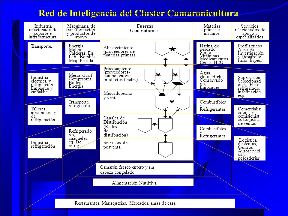 Red de Inteligencia del Cluster Camaronicultura