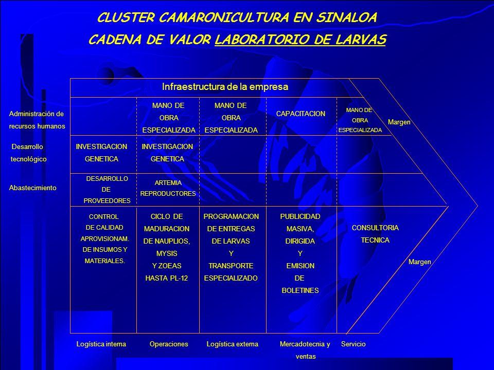 CLUSTER CAMARONICULTURA EN SINALOA