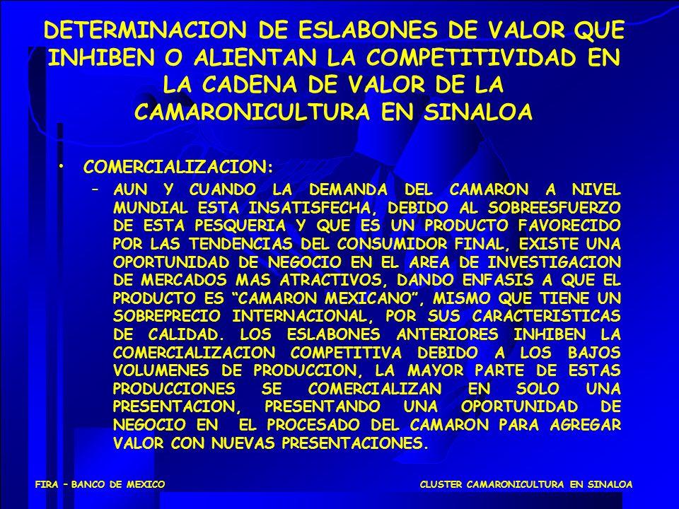 DETERMINACION DE ESLABONES DE VALOR QUE INHIBEN O ALIENTAN LA COMPETITIVIDAD EN LA CADENA DE VALOR DE LA CAMARONICULTURA EN SINALOA