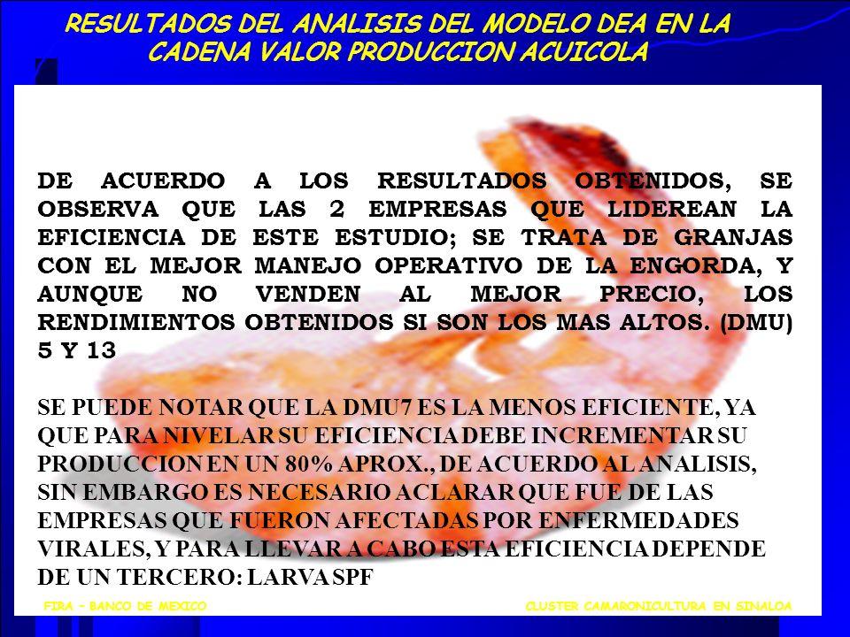 RESULTADOS DEL ANALISIS DEL MODELO DEA EN LA CADENA VALOR PRODUCCION ACUICOLA