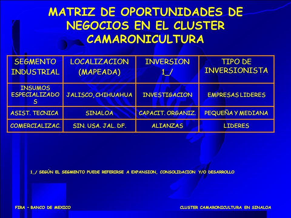 MATRIZ DE OPORTUNIDADES DE NEGOCIOS EN EL CLUSTER CAMARONICULTURA