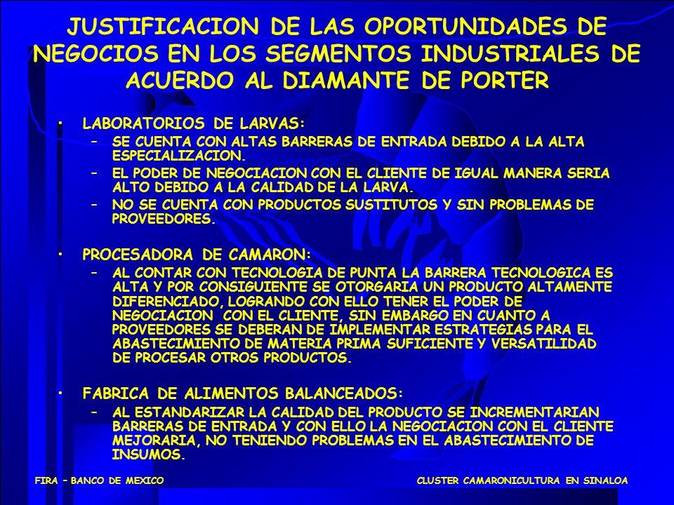 JUSTIFICACION DE LAS OPORTUNIDADES DE NEGOCIOS EN LOS SEGMENTOS INDUSTRIALES DE ACUERDO AL DIAMANTE DE PORTER