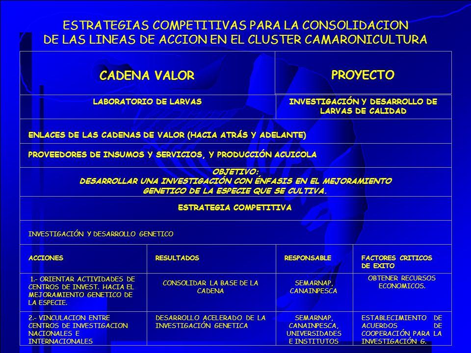 ESTRATEGIAS COMPETITIVAS PARA LA CONSOLIDACION