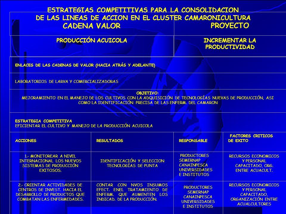 CADENA VALOR PROYECTO ESTRATEGIAS COMPETITIVAS PARA LA CONSOLIDACION