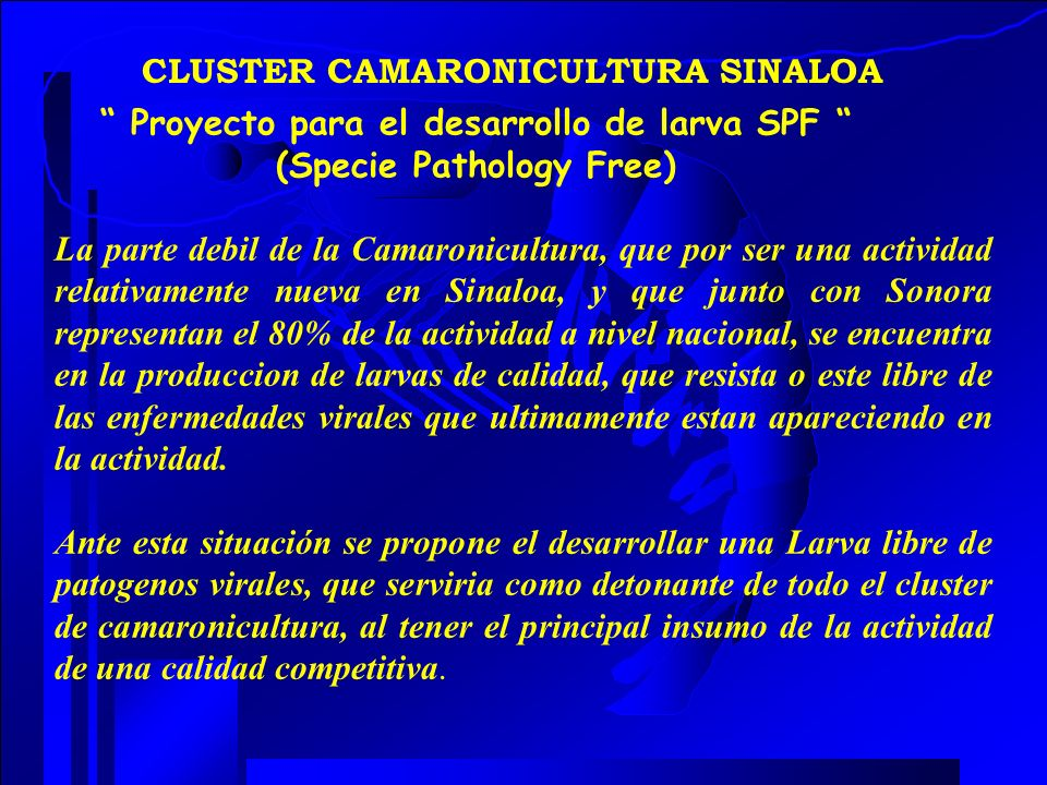 Proyecto para el desarrollo de larva SPF (Specie Pathology Free)