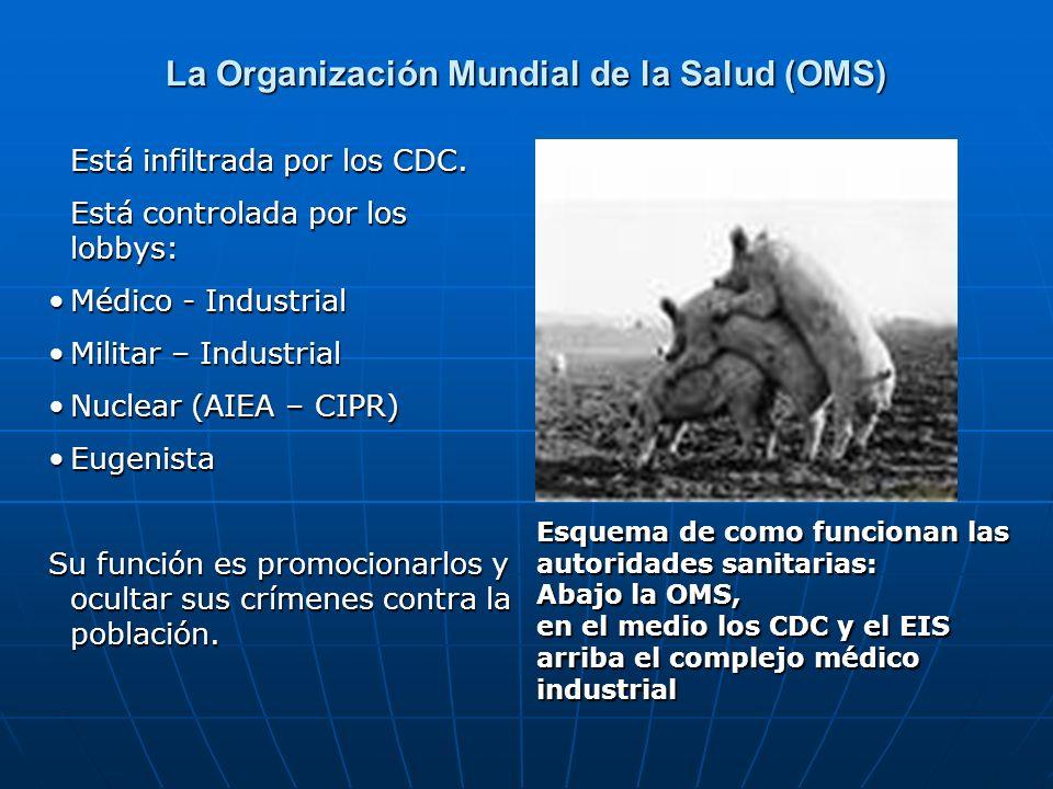 La Organización Mundial de la Salud (OMS)
