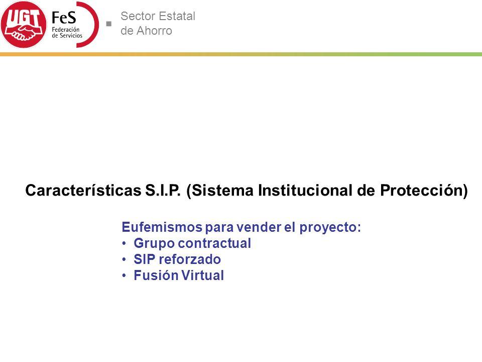Características S.I.P. (Sistema Institucional de Protección)