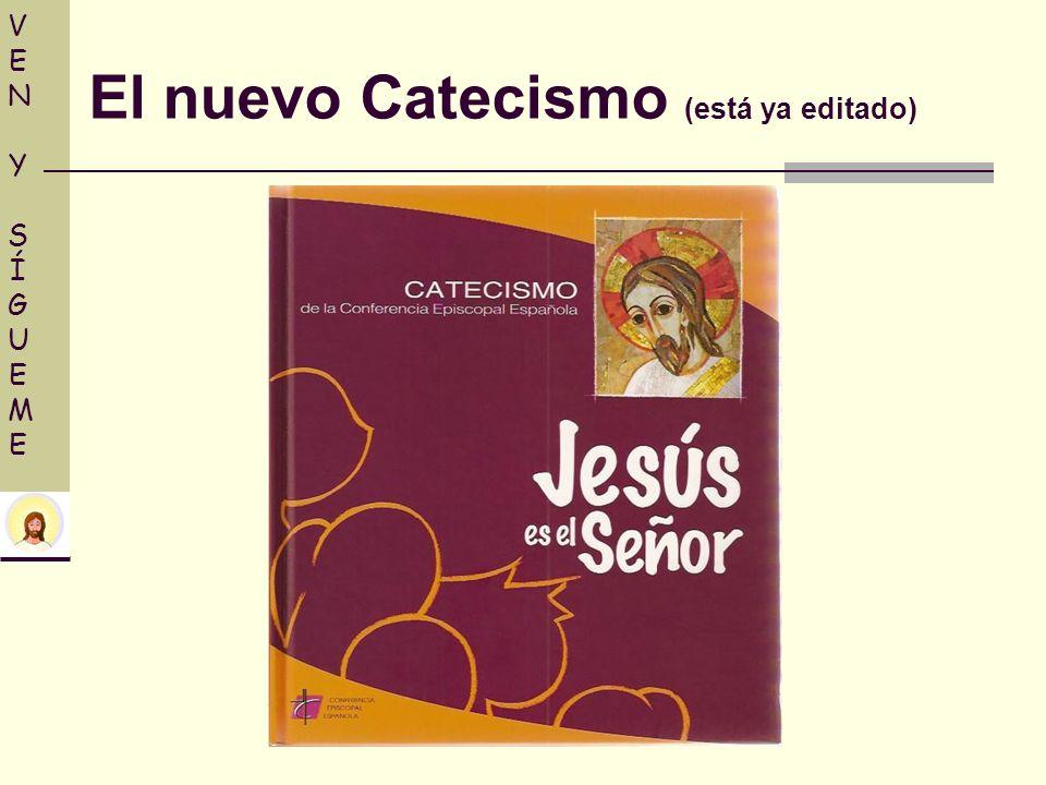 El nuevo Catecismo (está ya editado)