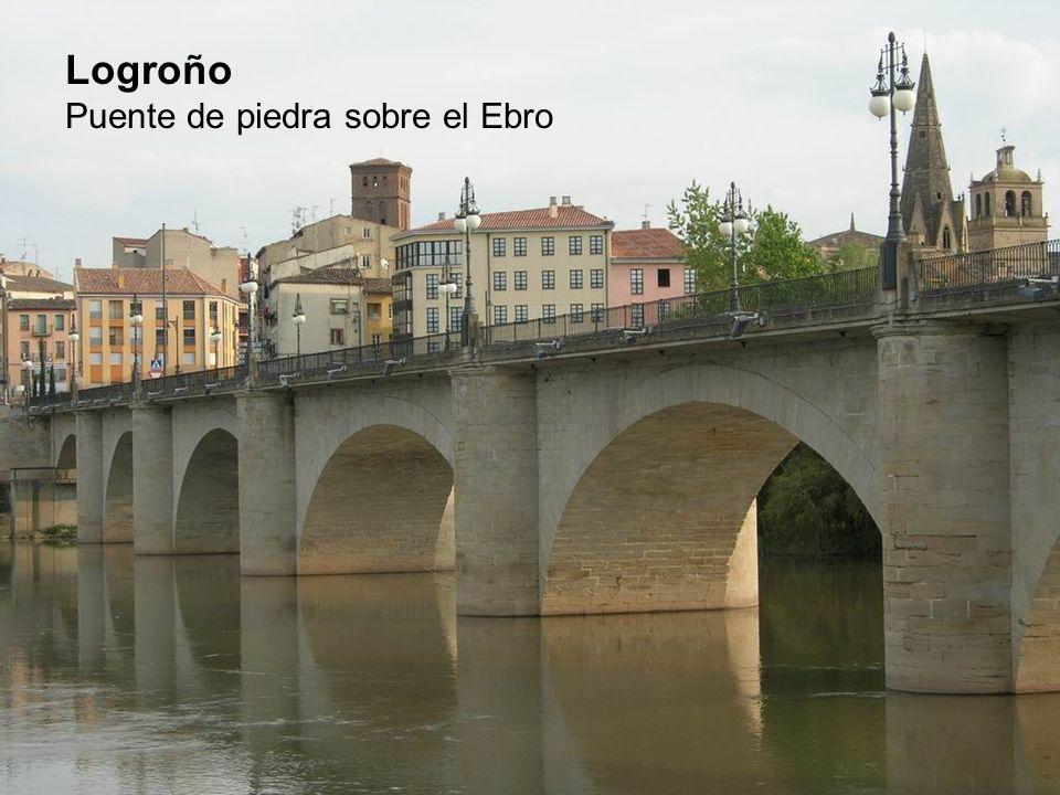 Logroño Puente de piedra sobre el Ebro