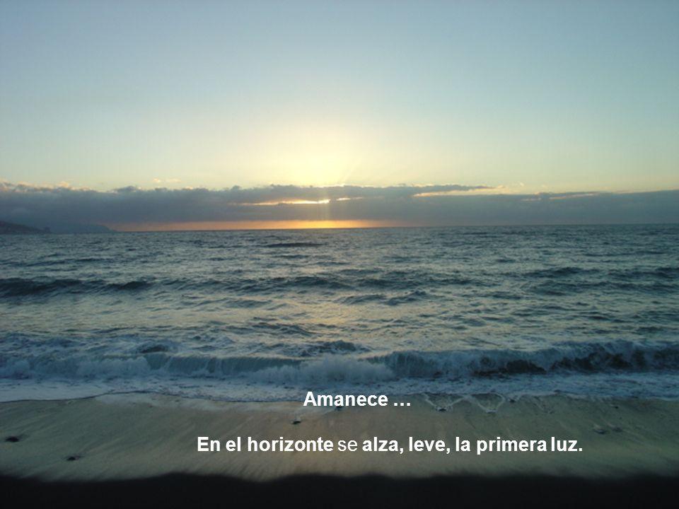 En el horizonte se alza, leve, la primera luz.