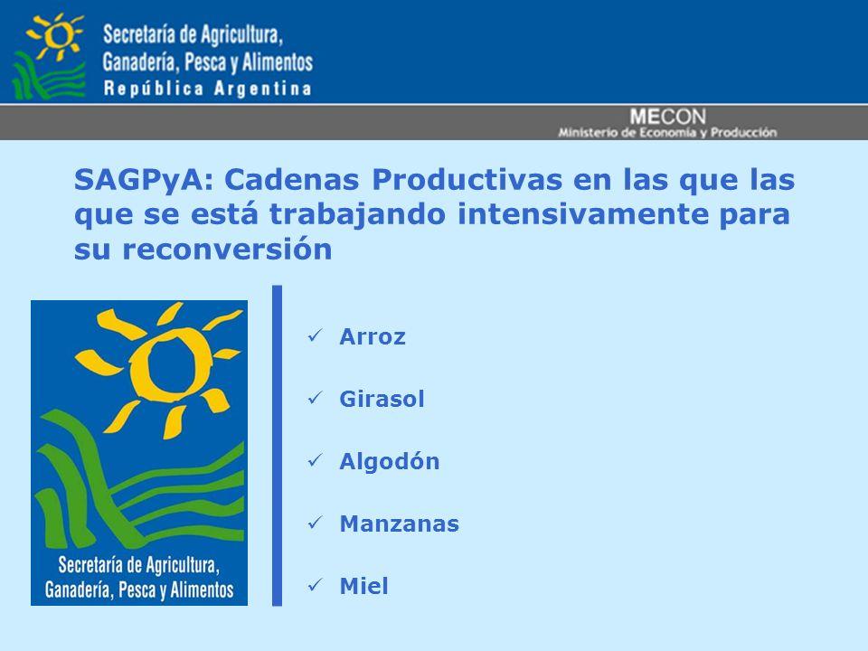 SAGPyA: Cadenas Productivas en las que las que se está trabajando intensivamente para su reconversión