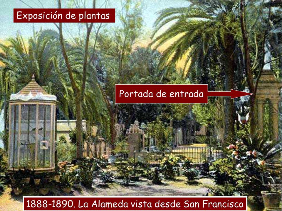 Exposición de plantas Portada de entrada 1888-1890. La Alameda vista desde San Francisco