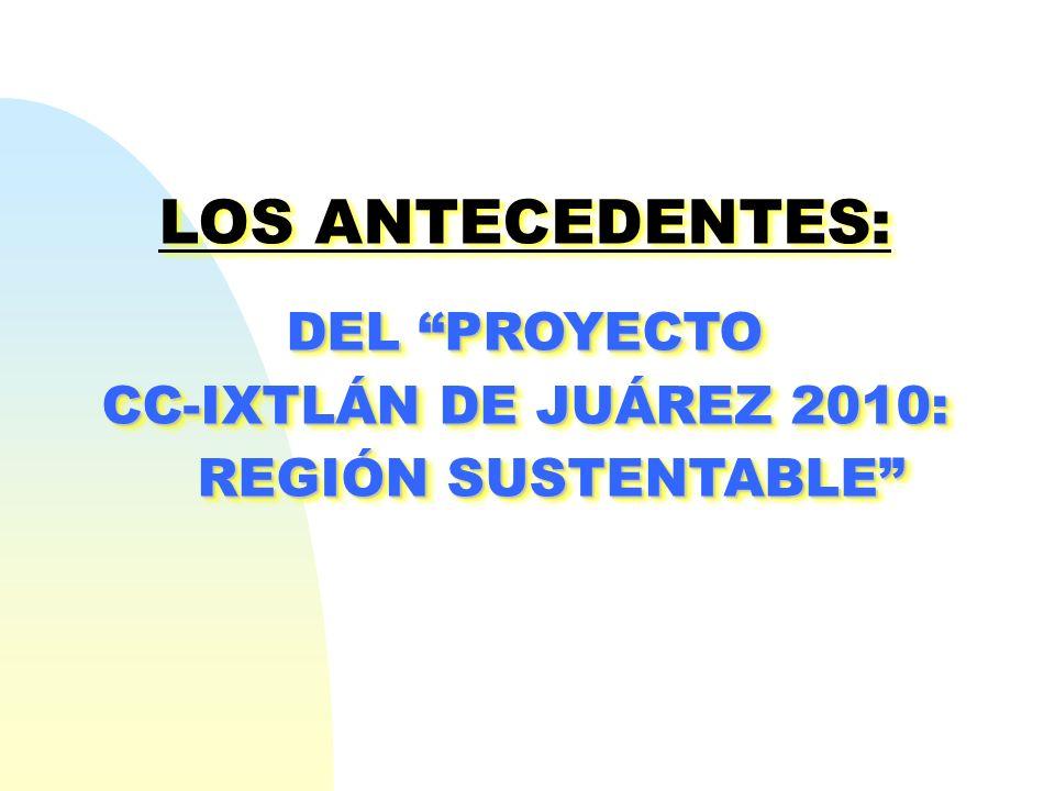 CC-IXTLÁN DE JUÁREZ 2010: REGIÓN SUSTENTABLE