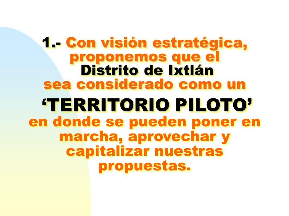 'TERRITORIO PILOTO' 1.- Con visión estratégica, proponemos que el