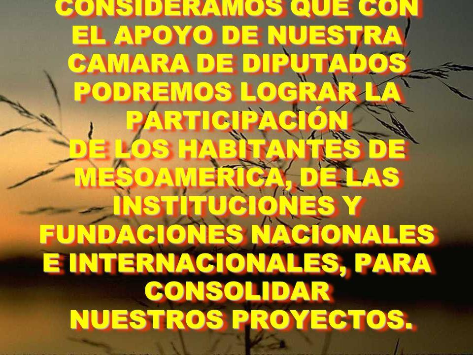 CONSIDERAMOS QUE CON EL APOYO DE NUESTRA CAMARA DE DIPUTADOS PODREMOS LOGRAR LA PARTICIPACIÓN DE LOS HABITANTES DE MESOAMERICA, DE LAS INSTITUCIONES Y FUNDACIONES NACIONALES E INTERNACIONALES, PARA CONSOLIDAR NUESTROS PROYECTOS.