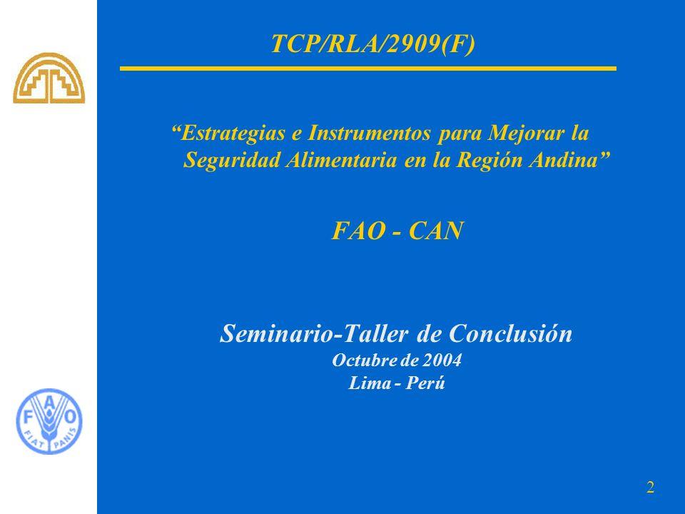 Seminario-Taller de Conclusión Octubre de 2004 Lima - Perú