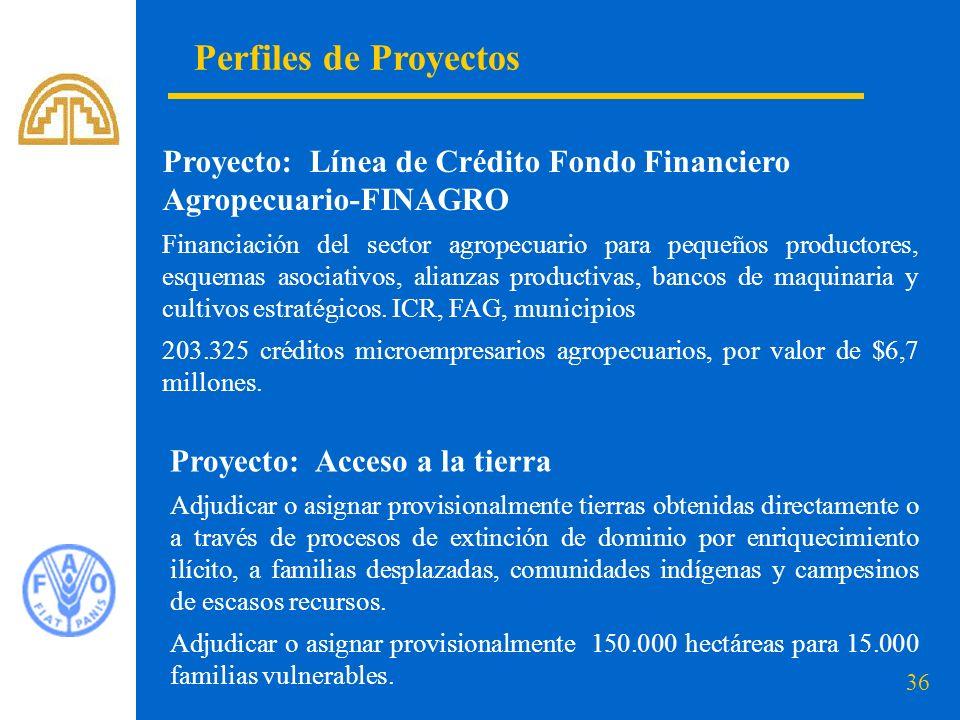 Perfiles de Proyectos Proyecto: Línea de Crédito Fondo Financiero Agropecuario-FINAGRO.
