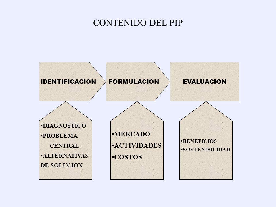 CONTENIDO DEL PIP MERCADO ACTIVIDADES COSTOS IDENTIFICACION
