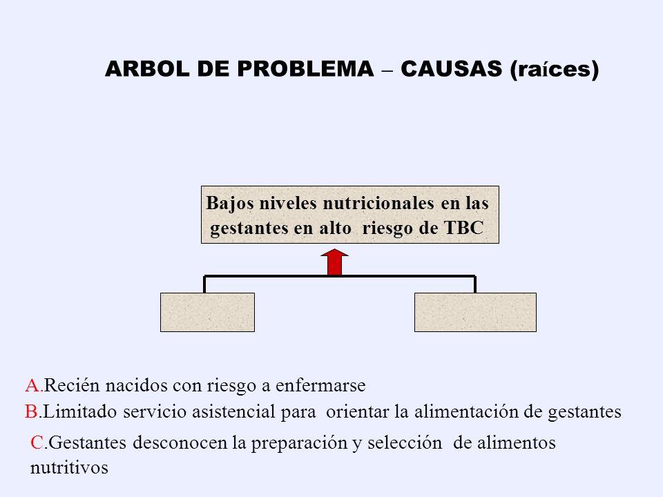 ARBOL DE PROBLEMA – CAUSAS (raíces)