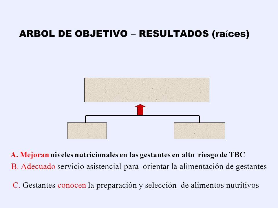 ARBOL DE OBJETIVO – RESULTADOS (raíces)